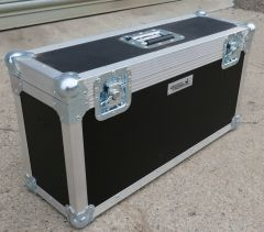 Monitor Carry Case Holds 2  (CLEARANCE CASE)